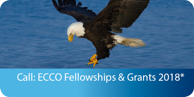 Fellowships and Grants