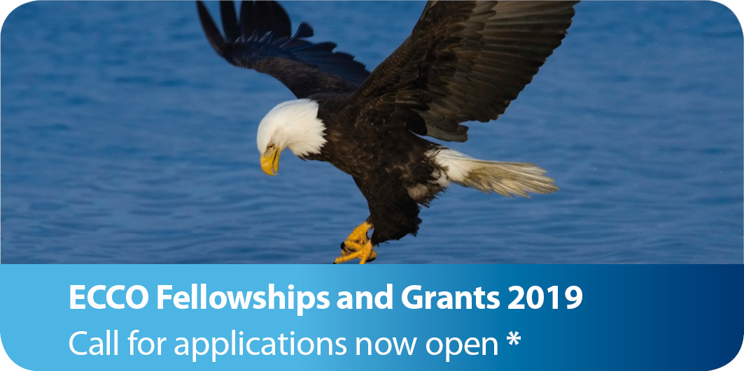 Fellowships and grants Call