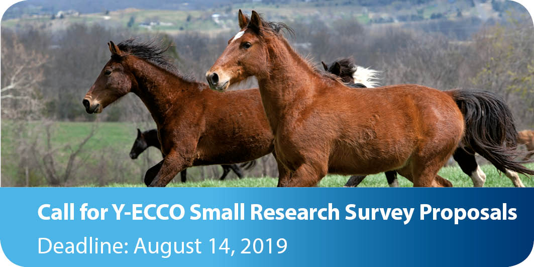 9 Y ECCO Survey