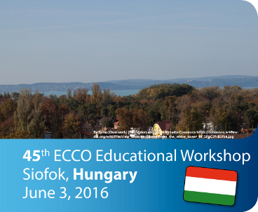 2016 POSTER Workshops-webHUNGARY