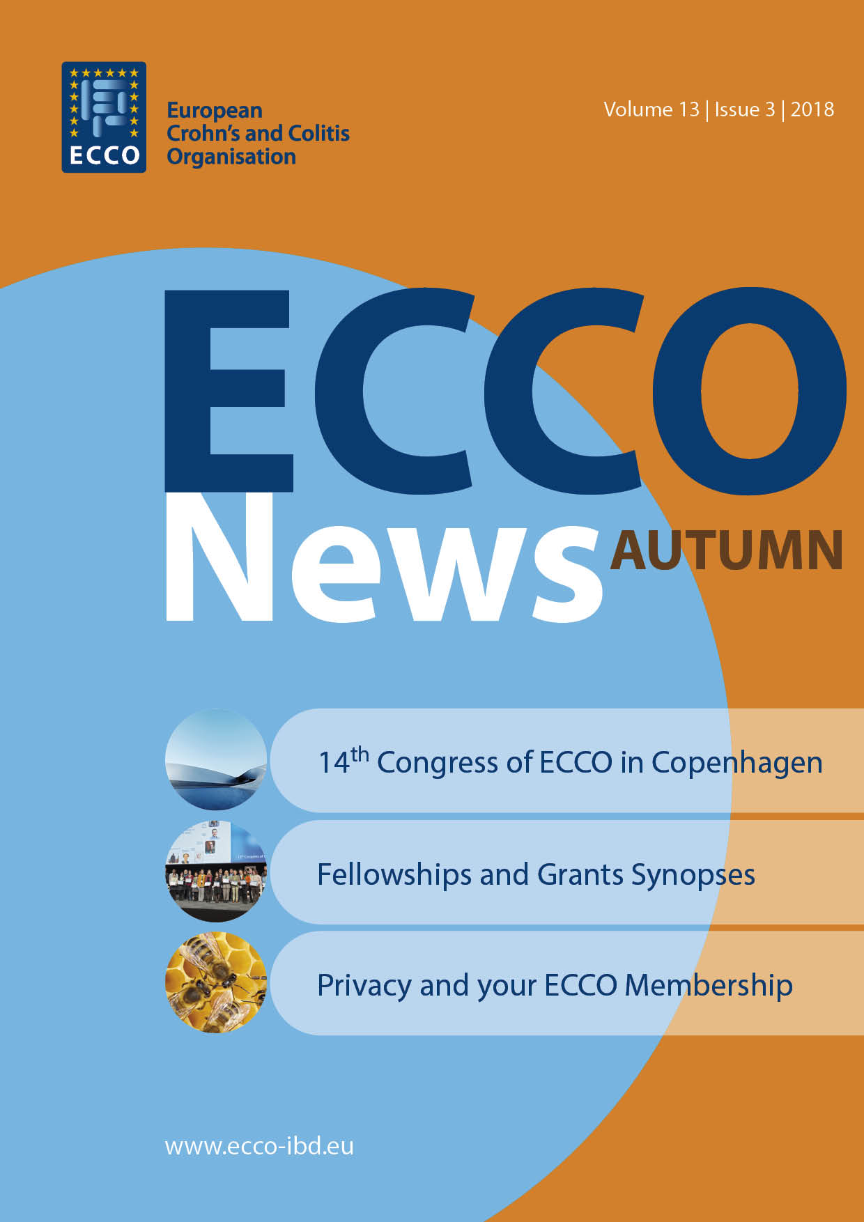 2018 Nr3 Cover ECCO News